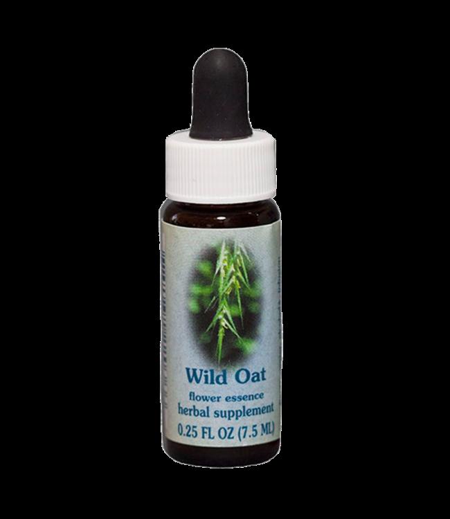 Healingherbs Wild Oat Flower Essence 7.5ml