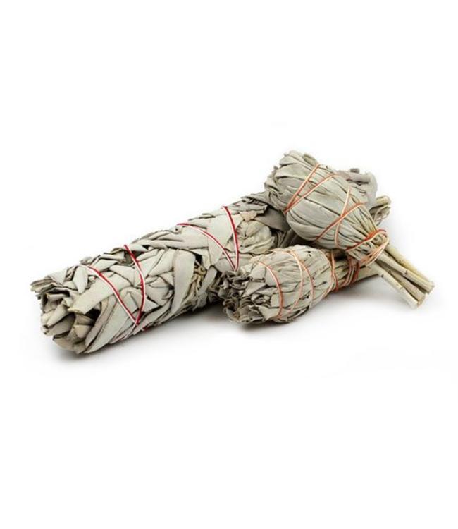 """Sage wand 4"""" (Sm.)"""
