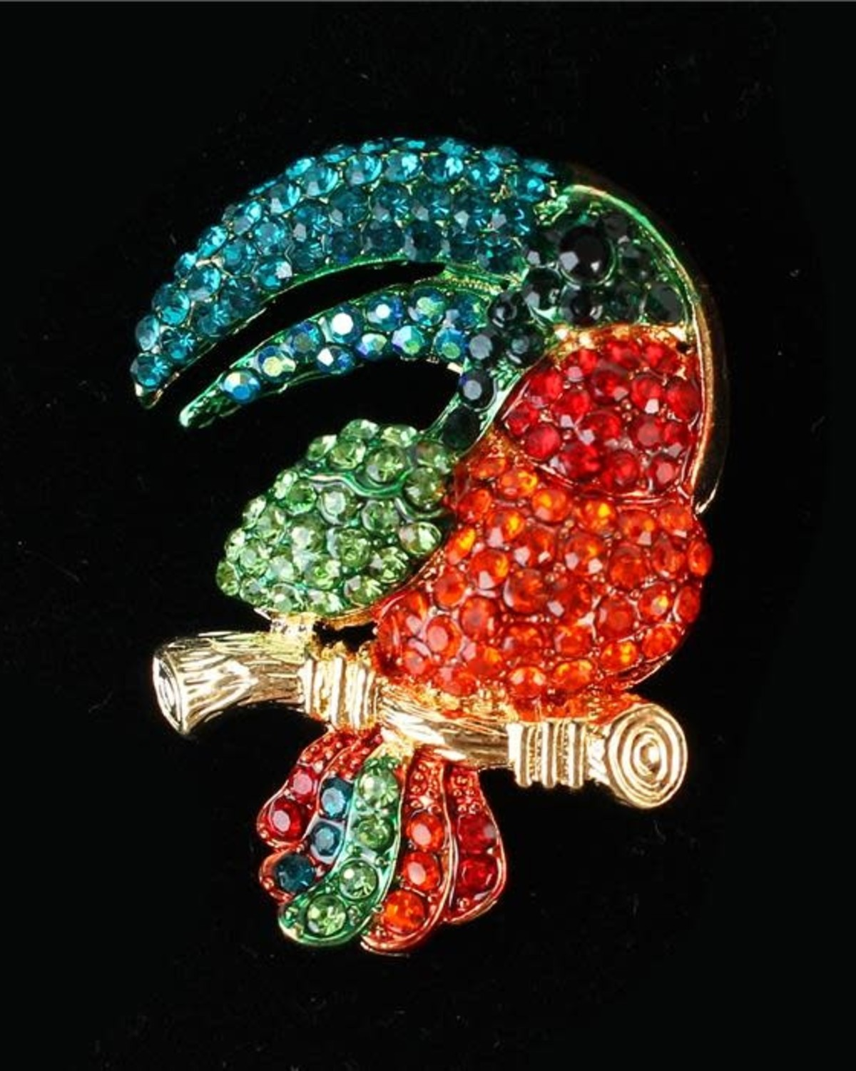 Tropical Parrot Brooch