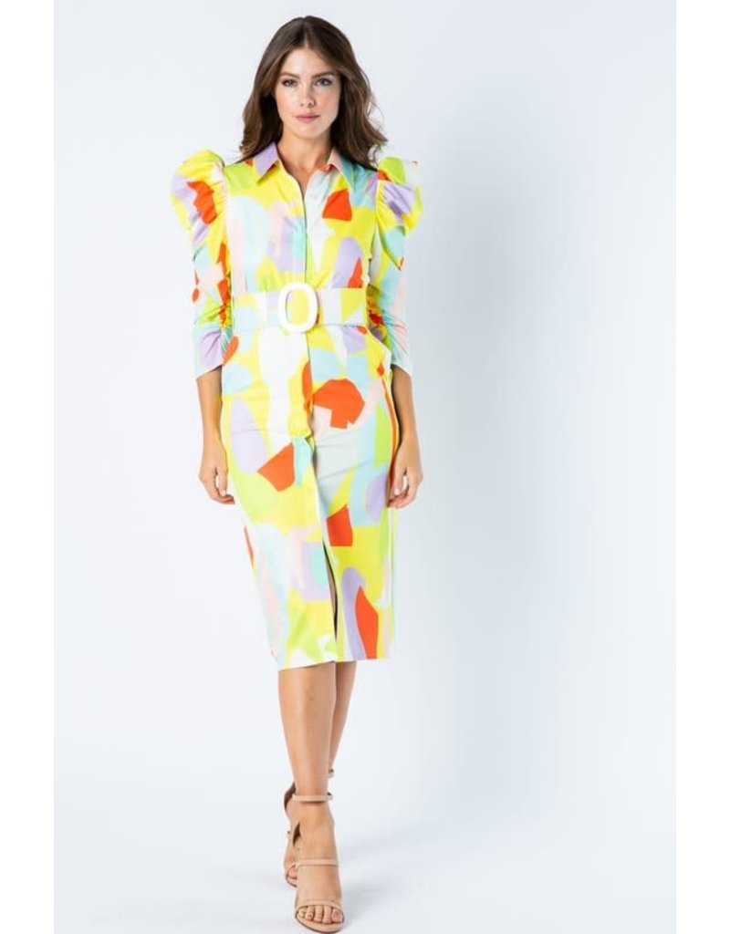 Paint Works Abstract Dress