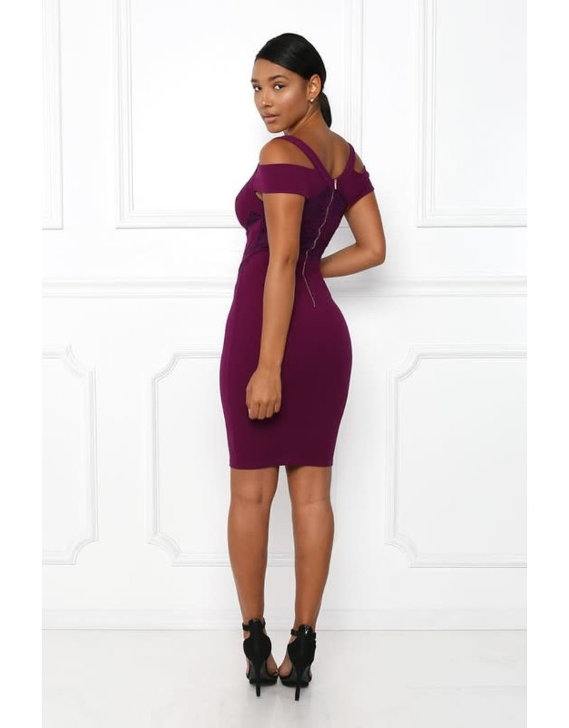 Never Give Up Lace Bodycon Dress