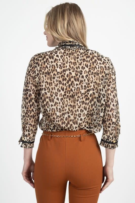 In A Frenzy Leopard Top