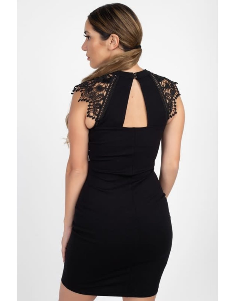 Leading The Trim Lace Trim Dress
