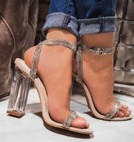 Pure Bliss Clear Block Heels Nude