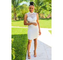 Elegance Within Lace Bodycon Dress