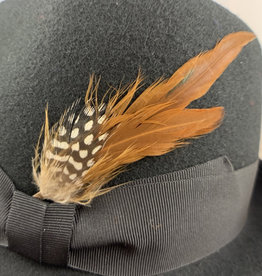 Feathers light Brown