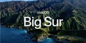 Big Sur - Big Trouble???