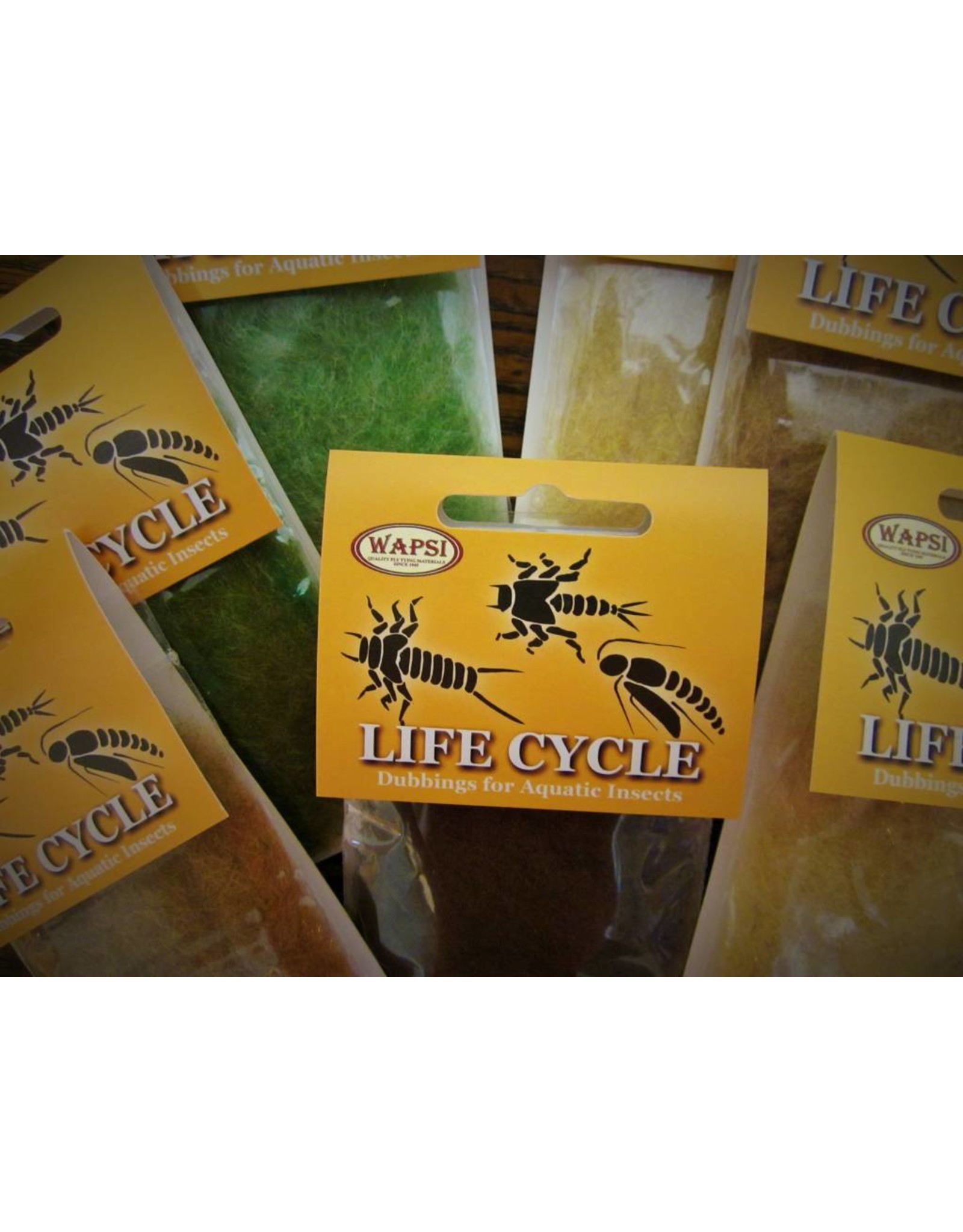 Life Cycle Dubbing