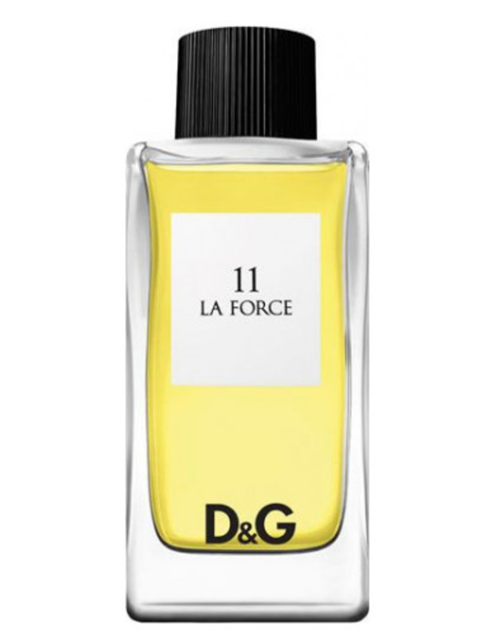 DOLCE & GABBANA DOLCE & GABBANA 11 LA FORCE
