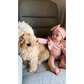 Lincoln&Lexi The Olivia 3 Piece Set