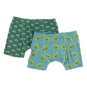 Kickee Pants Boxer Briefs Set (Ivy Mini Trees and Neptune Gingko)
