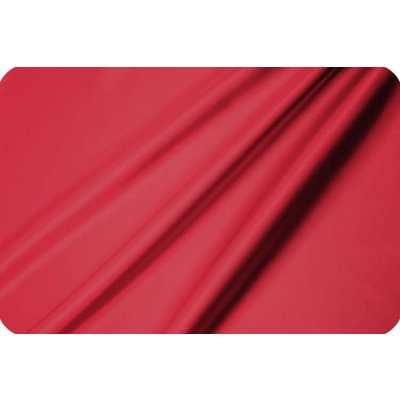 Lincoln&Lexi Red Satin