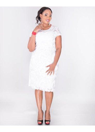 MEADOW- Plus Size Lace Illusion dress