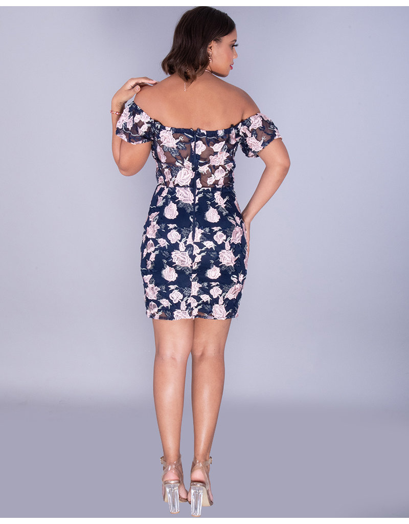 MALEAH- Embroidered Illusion Waist Dress