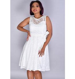 Sandra Darren MARCELLE- Mesh Cut Round Neck Dress