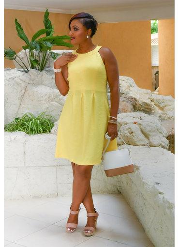 Pappagallo EARTHA- Hi-Neck Box Pleat Fit & Flare Dress
