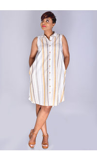 MLLE Gabrielle KYLA- Striped Sleeveless Collared Shirt Dress