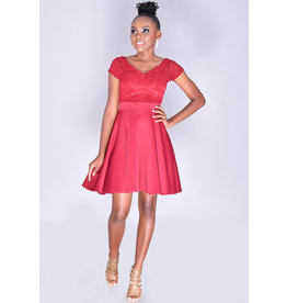 Yabes USHEL- Petite Lace Off-Shoulder Scuba Dress