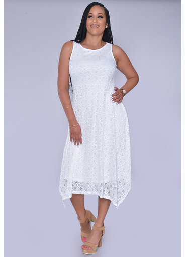 LAFAYNE- Lace Fit and Flare Dress
