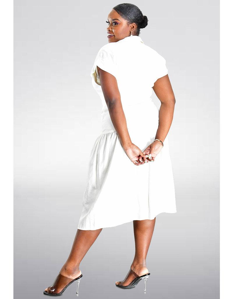 NISSA- Drop Waist Shirt Dress