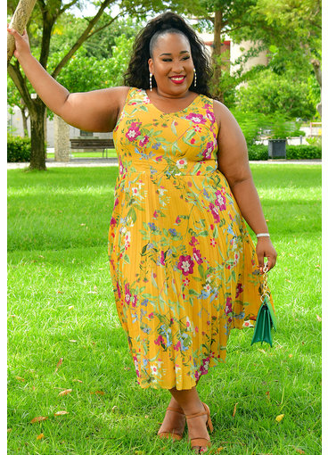 SANDRA- Plus Size Printed Fit and Flare Pleated Dress