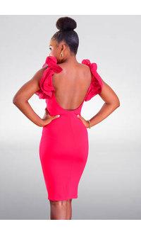 DAYLIGHT RIYUM- Petite Dramatic Ruffle Sleeve Dress