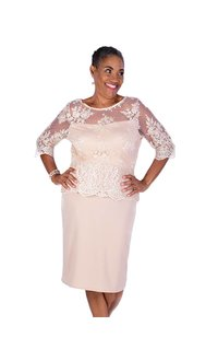 Lace Illusion  Three Quarter Sleeve Plume Dress