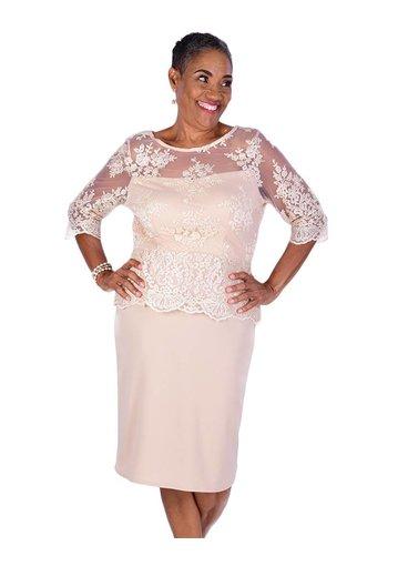 Lace Illusion  Three Quarter Sleeve Plume Dress