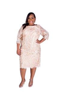 Shift Leaf Applique ¾ sleeved Design Dress