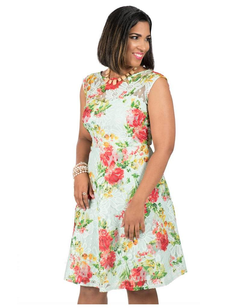 Printed Lace Fit & Flare Dress