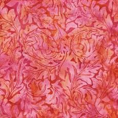 British Rose 111818345
