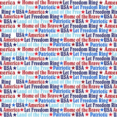 America Home Of The Brave SEF4629-1