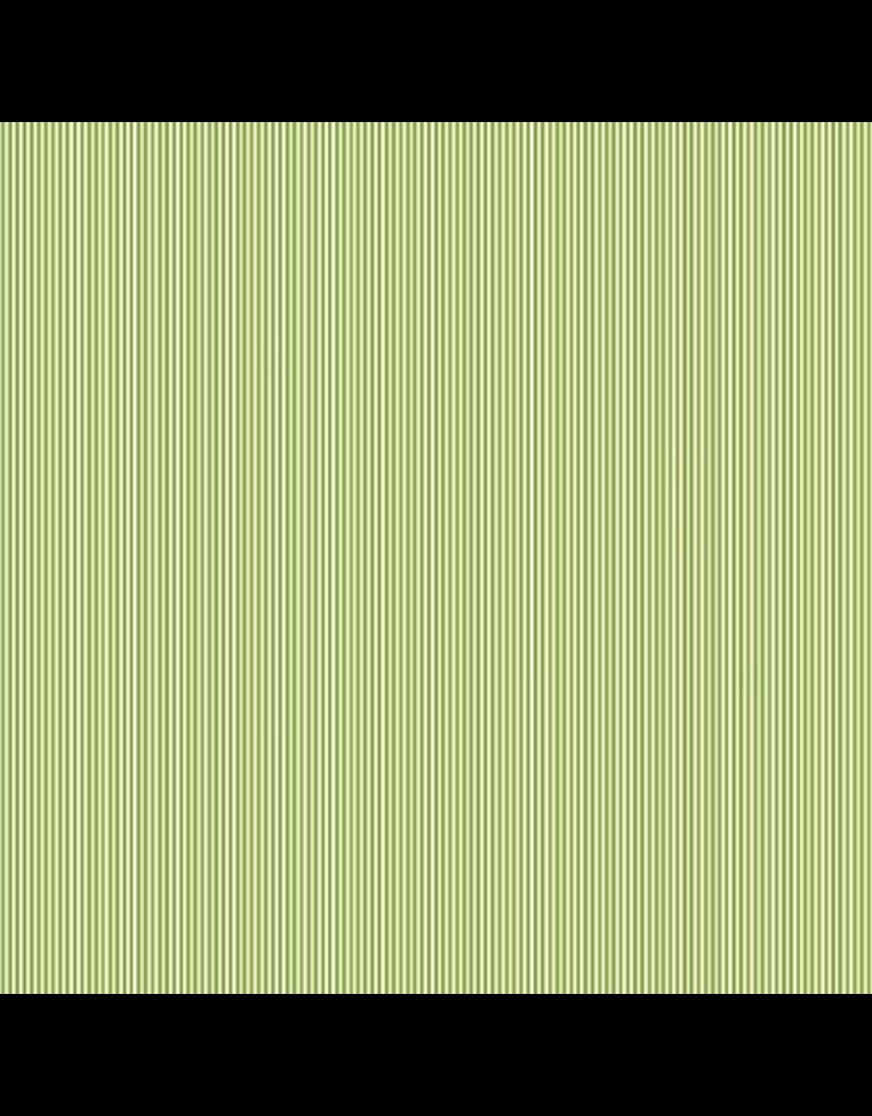 Pinstripe TP2088-G6