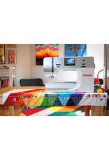 Bernina Basics February 15th 10:00am-1:00pm