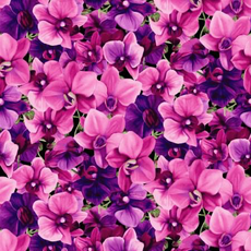 Clothworks Orchid Fancy Packed Floral- Y2947-77 Fuchsia