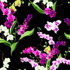 Clothworks Orchid Fancy Bouquets- Y2946-3 Black