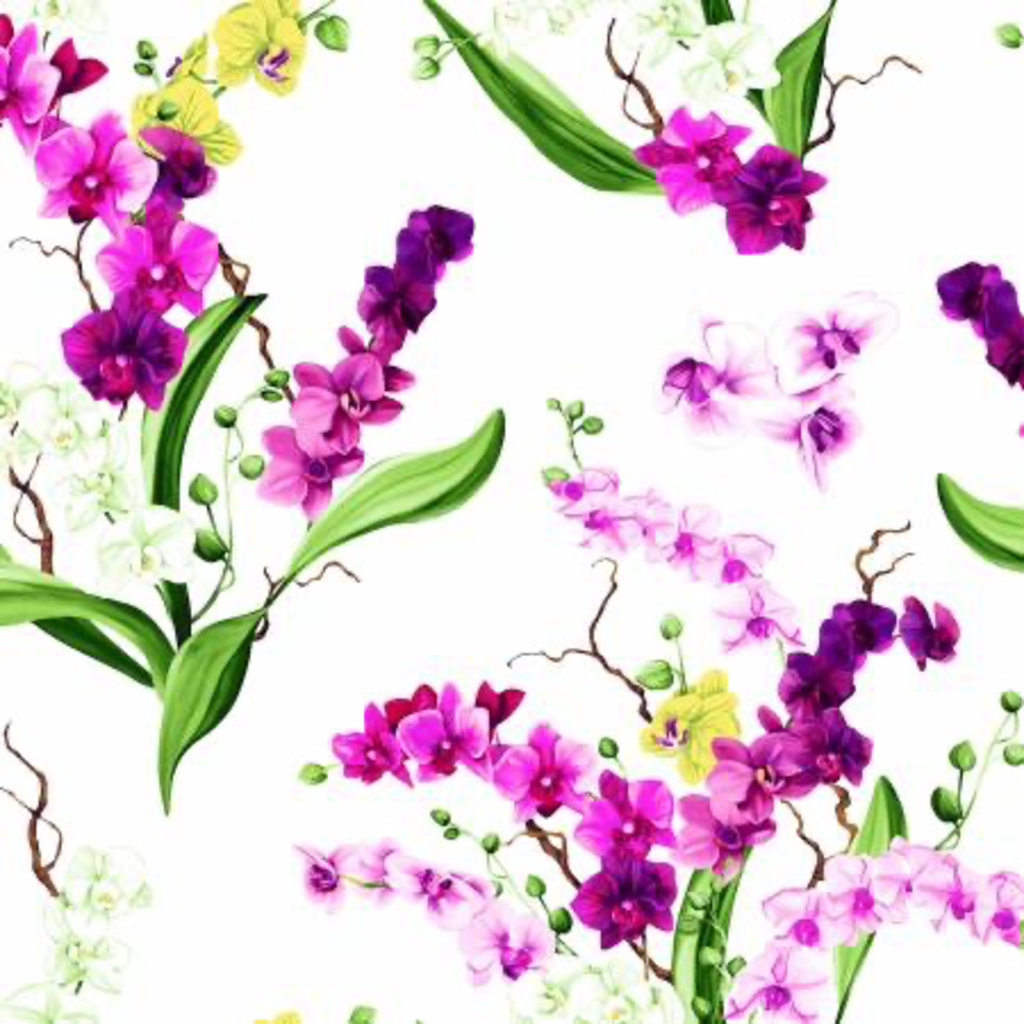 Clothworks Orchid Fancy Bouquets- Y2946-1 White