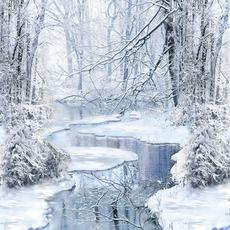 "Timeless Treasures 24"" Winter Hike Panel- PANEL-C7846 Blue"