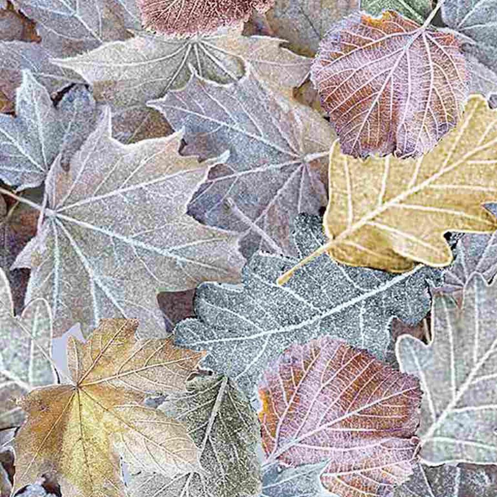 Timeless Treasures Multicolored Winter Large Leaves- ICE-C7849 Multi