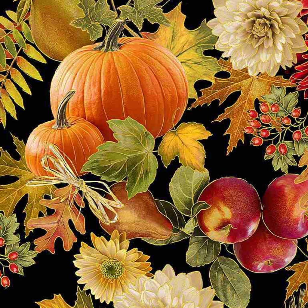 Timeless Treasures Harvest Foliage- HARVEST-CM7655 Black