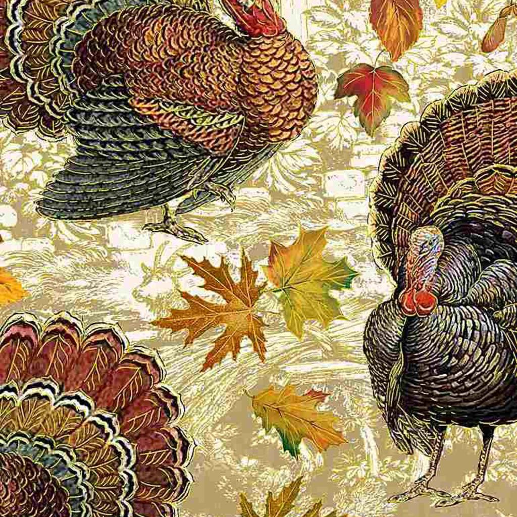 Timeless Treasures Harvest Turkeys- HARVEST-CM7658 Multi