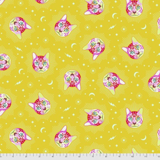 Tula Pink Pre-Order Tula Pink Curiouser & Curiouser Chesire- PWTP164.WONDER Wonder