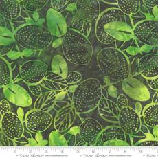 Moda Aloha Jungle- 4356 37 Dark Green