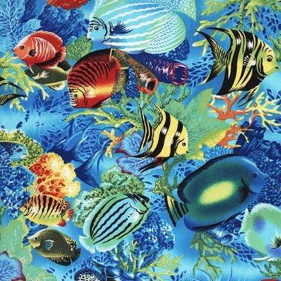 Tropical Fish CX1418-Brit-D