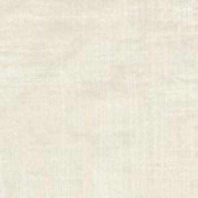 Painter's Canvas CJ4816-VANI-D