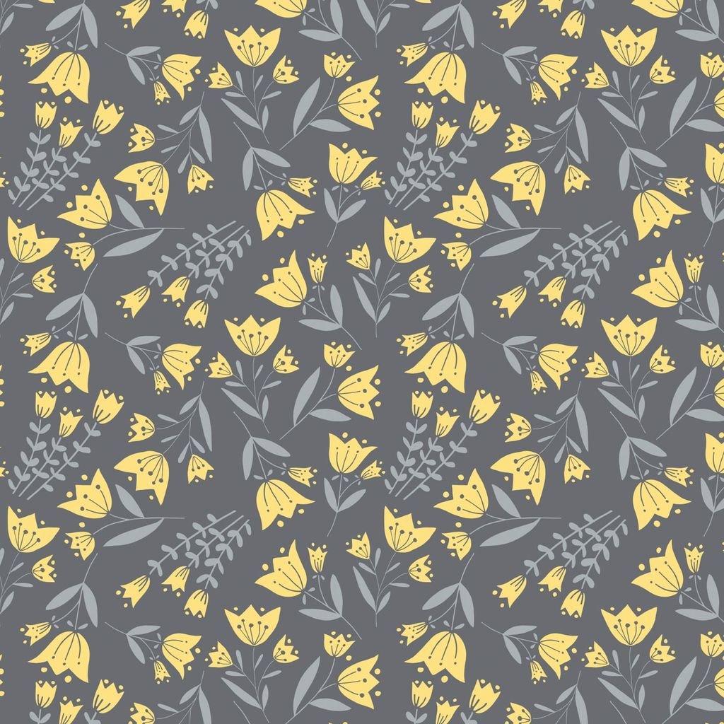 Flutter & Buzz CAM6141802-2
