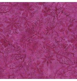 Tonga B2039-Berry