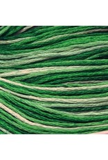 Presencia Embroidery Floss Variegated-9815 Nile Green