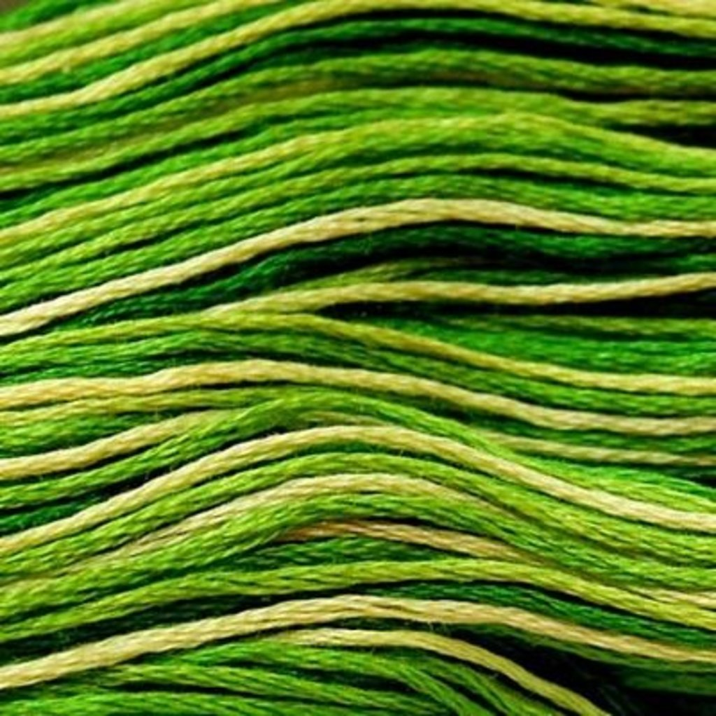 Presencia Embroidery Floss Variegated-9860 Foliage Green