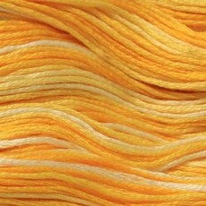 Presencia Embroidery Floss Variegated-9060 Glorious Gold